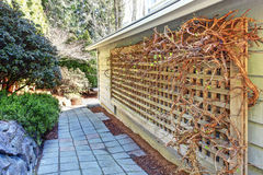 Backyard with walkway and grid attached to the wall Royalty Free Stock Photos
