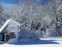 Backyard in Winter. Crisp, sunny winter day in Nova Scotia. Fresh snowfall in my son's backyard Stock Photography