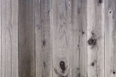 Backyard Wooden Fence Royalty Free Stock Photos