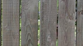 Backyard wooden fence Stock Image