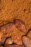 Baclground de cacao Photographie stock libre de droits