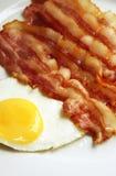 baconägg Arkivbild