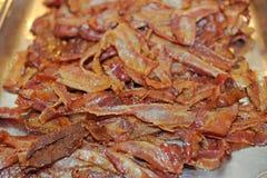 Bacon Immagini Stock Libere da Diritti