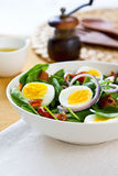 Bacon with egg and spinach salad Stock Image
