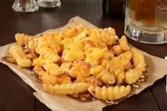Bacon and cheese fries Stock Photos