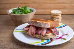Bacon cheese sandwich and salad