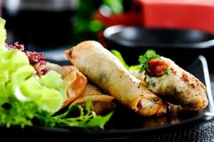 Springroll Royalty Free Stock Photo