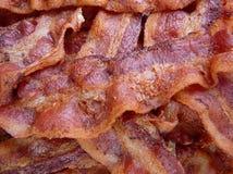 Bacon cozinhado fotografia de stock