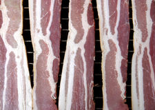 Bacon, cru Fotografia de Stock