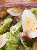 Bacon and Egg Salad Royalty Free Stock Images