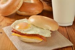 Bacon and egg sandwich Stock Images