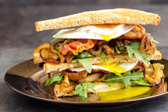 Bacon and Egg Sanwich Royalty Free Stock Photography