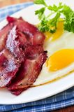 Bacon and eggs. Tasty breakfast of bacon and fried eggs Royalty Free Stock Photo