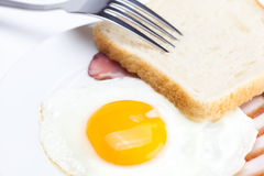 Bacon with  fried  eggs Stock Photos