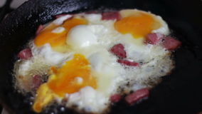 Bacon and fried Eggs stock footage