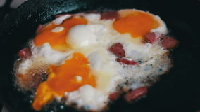 Bacon and fried Eggs stock video footage