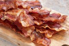 Bacon gorduroso cozinhado foto de stock royalty free