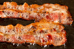 Bacon on grill Stock Images