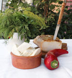 Bacon with knife, onion, cheese, red pepper and dill. Bacon on wooden board with knife, onion, cheese, dill, red pepper and parsley leaves Stock Photography