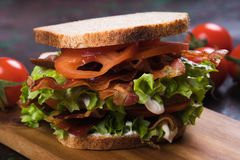 Bacon lettuce and tomato sandwich. BLT sandwich with fried bacon, lettuce and tomato in slices of bread Royalty Free Stock Image