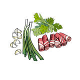 Bacon, parsley, onion and garlic. food spaces. Royalty Free Stock Images