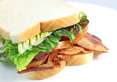 Bacon Sandwich Stock Image