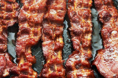 Bacon slice being cooked in frying pan Royalty Free Stock Images