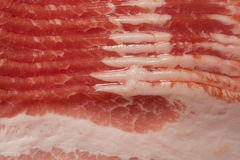 Bacon strips Stock Photography