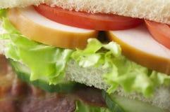 Bacon, Turkiet och tomatsmörgås Fotografering för Bildbyråer