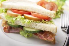 Bacon, Turkiet och tomatsmörgås Royaltyfria Foton