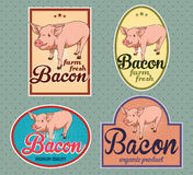 Bacon vintage labels. For using in different spheres Royalty Free Stock Photo
