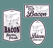 Bacon vintage labels. For using in different spheres Stock Photography