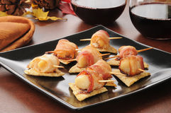 Bacon wrapped scallops appetizers Stock Images