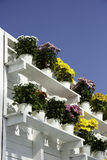 Bacs de fleurs Photographie stock libre de droits