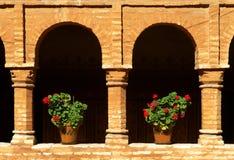 Bacs de fleurs Image libre de droits