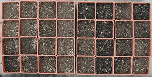 Bacs de jardinage vides Images stock
