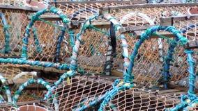 Bacs de langoustine à Brighton Images libres de droits
