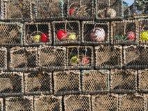 Bacs de langoustine à Brighton Images stock