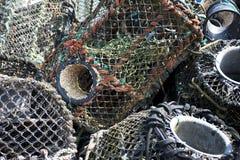 Bacs de langoustine Images stock