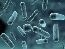 bactérias 3d Fotografia de Stock Royalty Free