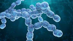 Bactérie 3d de Diplococcus rendre illustration libre de droits