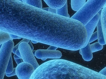Bacteriën Stock Afbeelding