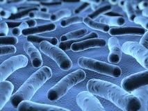 Bacteriën onder een aftastenmicroscoop die worden gezien vector illustratie