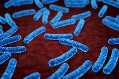 Bacteriën onder microscoop royalty-vrije illustratie
