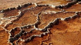Bacteriënpools in Yellowstone stock videobeelden