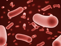 Bacteria Royalty Free Stock Photos