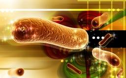 Bacteria. Digital illustration of bacteria in 3d on digital background royalty free illustration