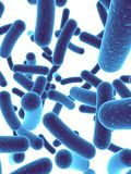 Bacteria Royalty Free Stock Photo