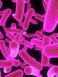 Bacteria. 3d rendered close up of many bacteria Royalty Free Stock Photo