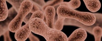 Bacteria Royalty Free Stock Photos